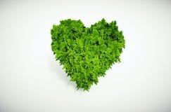 Eco heart Royalty Free Stock Photography