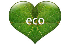 Eco heart. From green leaf Royalty Free Stock Photos