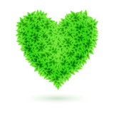 Eco heart. Stock Images