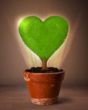 Eco heart tree coming out from flowerpot Royalty Free Stock Photo