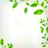 Eco Hintergrund Lizenzfreie Stockfotografie