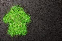 Eco-Hintergrund mit Boden und Haus des Grases Lizenzfreies Stockbild