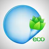 Eco-Hintergrund mit Grünblättern und -papier Lizenzfreie Stockfotografie