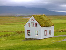 Eco house. With grass roof in iceland Royalty Free Stock Images