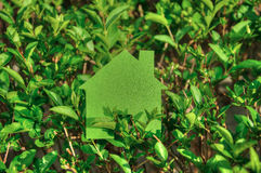 Eco house concept in a green plants , green eco house icon in nature Stock Photography