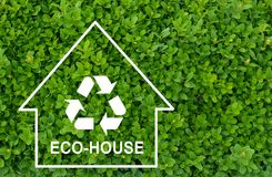 Eco house concept on green shrub background Stock Photo