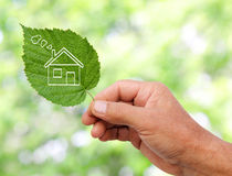 Eco house concept, hand holding eco house. Icon in nature Stock Images