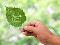 Eco house concept. Hand holding eco house icon in nature Stock Image