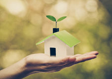 Eco house. Hand holding a small green house with a young green plant growing on the roof / Ecohouse concept Royalty Free Stock Image