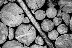 Wooden log wall black and white Royalty Free Stock Images