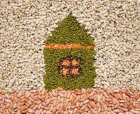 Eco house metaphor Stock Image