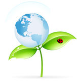 ECO icon. Green ecology icon with leaves and globe for your design Royalty Free Stock Images
