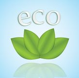 Eco icon Royalty Free Stock Image