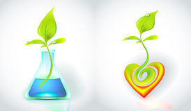 Eco-icon with green sprout. Eco-icons with green sprout in flask and in heart-shape Stock Images