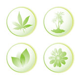 Eco icon leaf Stock Photos