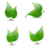 Eco icons. Set of four icons with leaves and dew Stock Photography