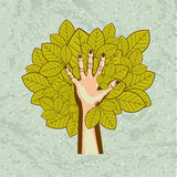 Eco ideas. Over pattern background vector illustration Royalty Free Stock Image