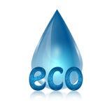 Eco ikona Obraz Stock