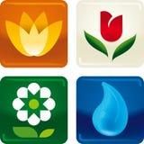 Eco ikony Obraz Royalty Free