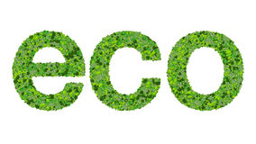 ECO illustration. A 3D illustration of the word eco made of green plants Stock Image