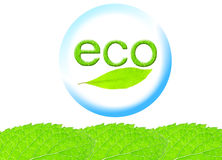 Eco image Stock Photos