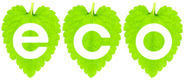 Eco image royalty free stock photography