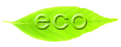 Eco image Royalty Free Stock Images