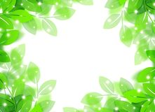 Eco image. Eco concept image of a leaves shining Royalty Free Stock Images