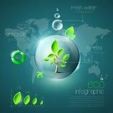 Eco infographic Fotos de archivo