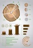 Eco infographic Imágenes de archivo libres de regalías