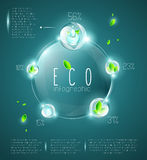 Eco infographic Royalty Free Stock Images