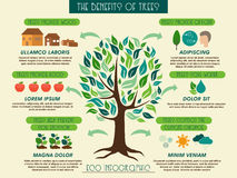 Eco infographic showing benefits of trees. Stock Photo