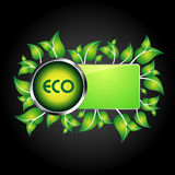 Eco information icon / logo Stock Photos