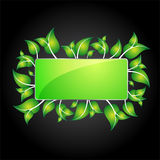 Eco information icon for web Stock Photo