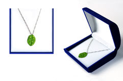 Eco Jewelry Concept Royalty Free Stock Images