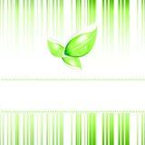 Eco Karte Stockfoto