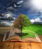 Eco książka Obraz Royalty Free