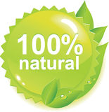 Eco label. Eco leaves green spring icon Stock Image