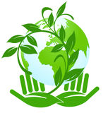 Eco-label. Green eco template with globe Stock Images