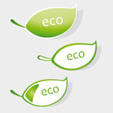 Eco label Royalty Free Stock Image