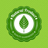 Eco label. Green logo. Natural product tag. Vector illustration. Stock Photography