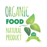 Eco Labels Bio template. Ecology theme. Stock Photography