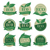 Eco labels with retro vintage  design. Retro and classic style eco icons that can be used in jobs Royalty Free Stock Photo