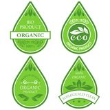 Eco labels. Set of four eco labels Royalty Free Stock Image
