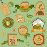 Eco labels vegetables Royalty Free Stock Images