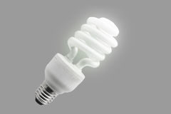 Eco lamp Royalty Free Stock Photography