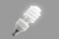 Eco Lampe Lizenzfreie Stockfotografie