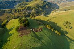 Eco lantbruk i landssida på flyg- sikt för rumänska berg från surret arkivbilder