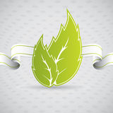 Eco leaf with ribbon Royalty Free Stock Photos
