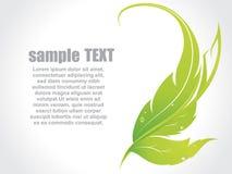Eco leaf concept. Vector illustration Stock Images